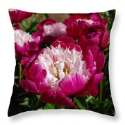 Red Peony Flowers Series 4 Throw Pillow