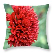 Red Plume Throw Pillow