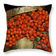 Red Pyracantha Berries Throw Pillow