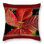 Red Quintete Throw Pillow