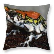 Red Rain Frog Throw Pillow