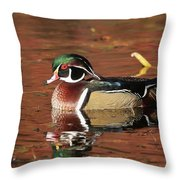 Red Reflection Of A Wood Duck Throw Pillow