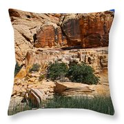 Red Rock Canyon The Tank Throw Pillow