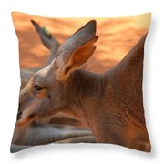 Red Roos Throw Pillow