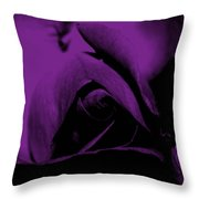 Red Rose Close Up 2011 In Violet Throw Pillow
