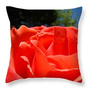 Red Rose Flower Bright Colorful Vivid Red Floral Rose Throw Pillow