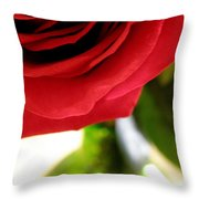 Red Rose In Glass Vase Throw Pillow
