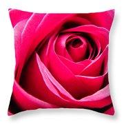 Red Rose Macro Throw Pillow