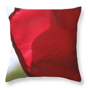 Red Rose Petal Throw Pillow