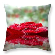 Red Rose Reflections Throw Pillow