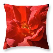 Red Rose Summer Throw Pillow