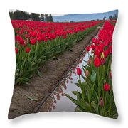 Red Rows Throw Pillow