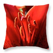 Red Rules Throw Pillow