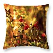Red Salvia Throw Pillow