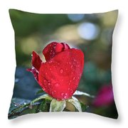 Red Saturated Throw Pillow