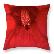 Red Saturation Point Throw Pillow