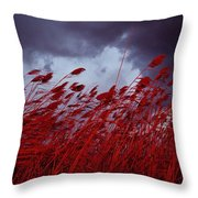 Red Sea Oats Blow In The Wind Throw Pillow