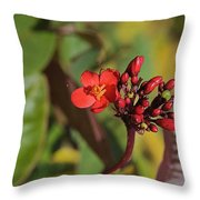 Red Snake Throw Pillow