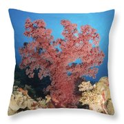 Red Soft Coral,  Australia Throw Pillow