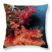 Red Soft Corals And Blue Leather Sea Throw Pillow