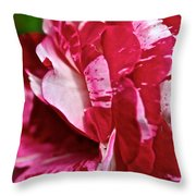 Red Speckled Rose Throw Pillow