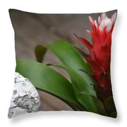 Red Spikes Throw Pillow