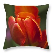 Red Spring Blooming Tulip Throw Pillow