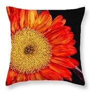 Red Sunflower II  Throw Pillow