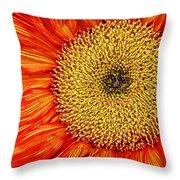 Red Sunflower Iv Throw Pillow