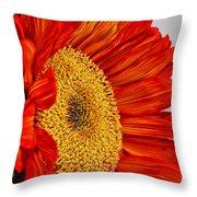Red Sunflower V Throw Pillow