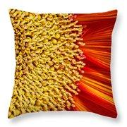 Red Sunflower Viiii Throw Pillow