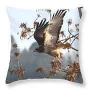 Red-tail Hawk Throw Pillow