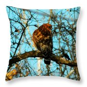 Red Tail Hawk Visitor Throw Pillow