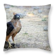 Red Tailed Hawk Catch Throw Pillow