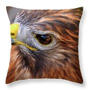 Red-tailed Hawk Close Up Throw Pillow