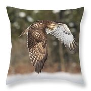 Red Tailed Take-off Throw Pillow