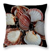 Red-toned Seashells Throw Pillow
