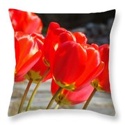 Red Tulip Flowers Art Prints Spring Florals Throw Pillow