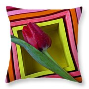 Red Tulip In Box Throw Pillow