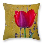 Red Tulip With Yellow Wall Throw Pillow
