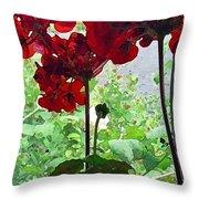 Red Window Geraniums Throw Pillow