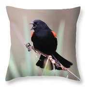 Red-winged Blackbird - Are You Listening Throw Pillow