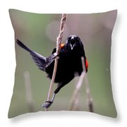 Red-winged Blackbird - Can You Hear Me Now Throw Pillow