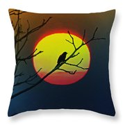 Red Winged Blackbird In The Sun Throw Pillow