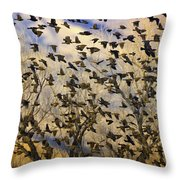 Red-winged Blackbirds At Sunset Throw Pillow