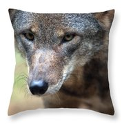 Red Wolf Closeup Throw Pillow