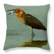 Reddish Egret Caught A Fish Throw Pillow