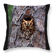 Reddish Screech Owl Throw Pillow