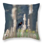 Redwinged Blackbird Throw Pillow