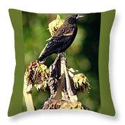 Redwinged Blackbird II Throw Pillow